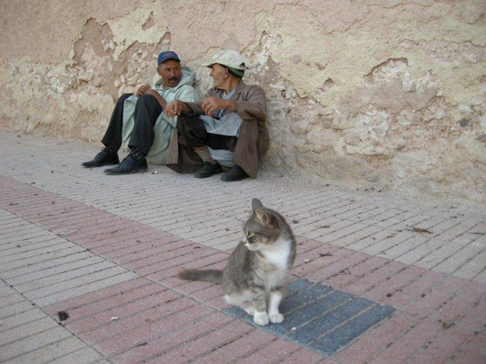 Charlotte met people in Essaouira Morocco on her solo travels