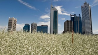 Yes, I'm from Perth, the most isolated city in the world