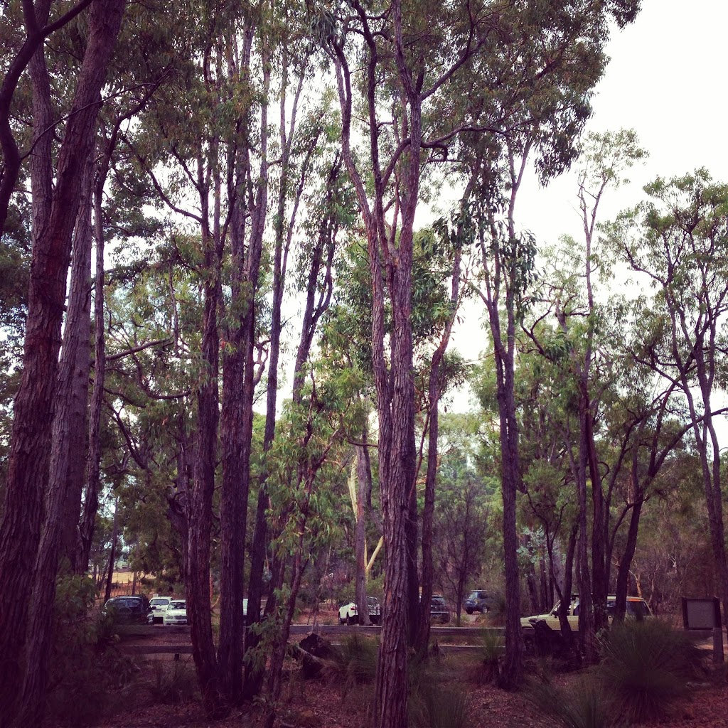 Travelling close to home: Camping in the Perth hills with kids