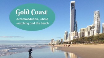 Gold Coast accommodation, whale watching and the beach