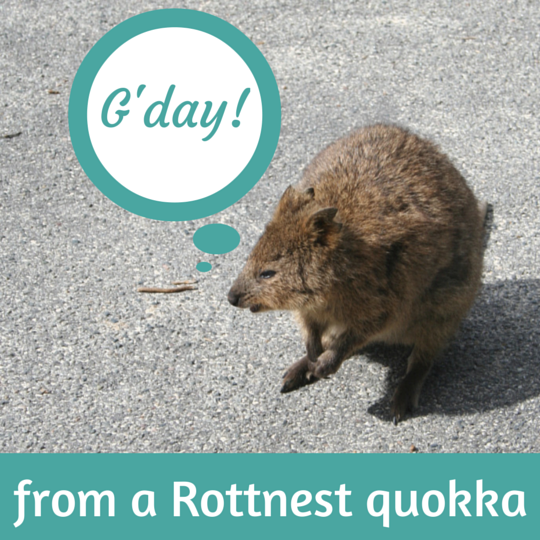 Rottnest Island Australia: Should You Visit Rottnest Island For A Day Trip Or