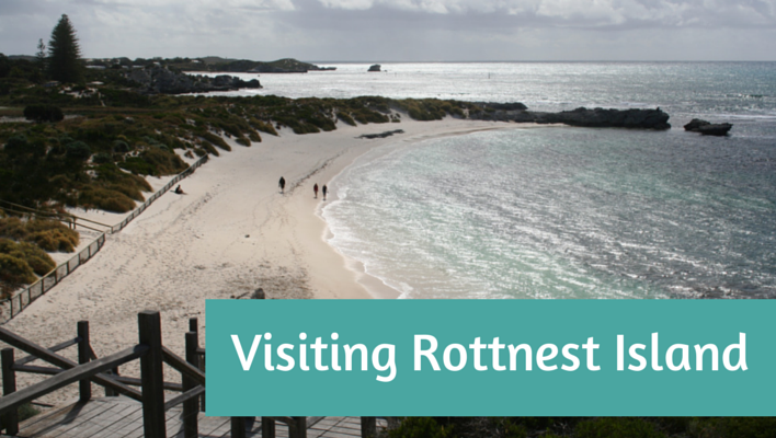 Visiting Rottnest Island, Western Australia
