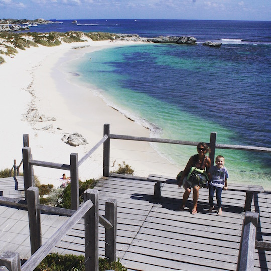 Perfect house guest visits Rottnest Island