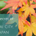 Secret of Sakai City, Japan