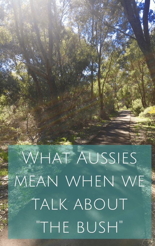 What Aussies mean when we talk about the bush