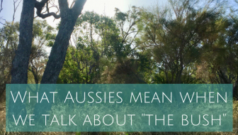 The Aussie bush – what Australians mean when they talk about the bush