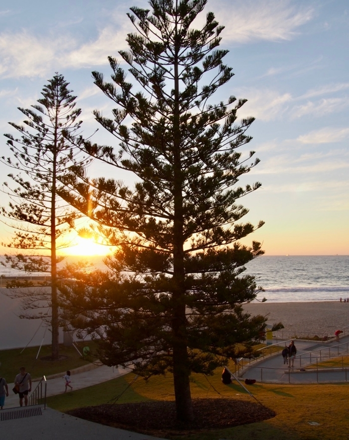 Perth suburbs City Beach