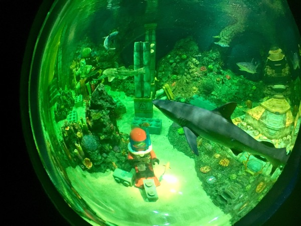 Our view from the Submarine Adventure ride in Legoland Japan