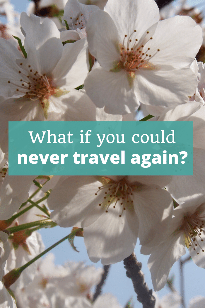What if you could never travel again?